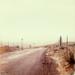lichau road by lawatt