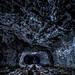Galerie d'une ancienne mine & champignonnière by Fern nebula