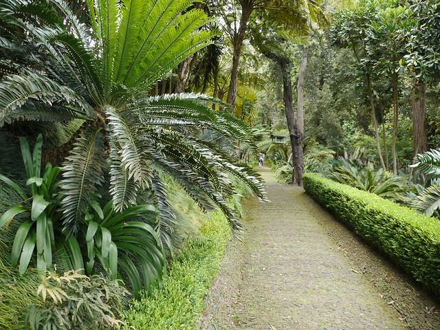 7914529796 3e6d917905 for Jardin tropical