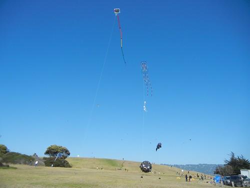 Kites at Cesar Chavez Park