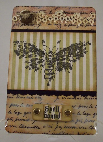 Death Head Moth Collage