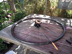 Building myself a wheel