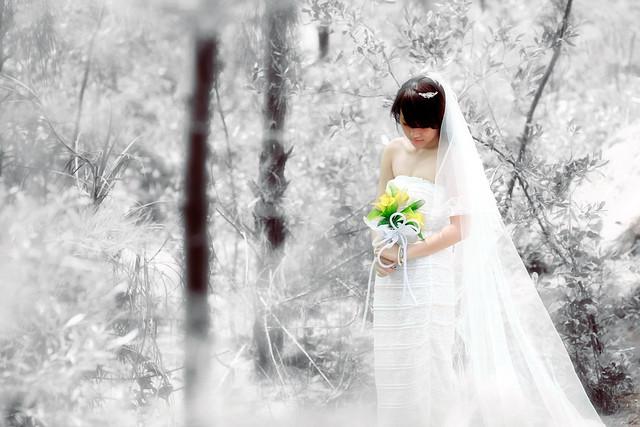 IMAGE: http://farm9.staticflickr.com/8459/8014131225_eba490bee0_z.jpg