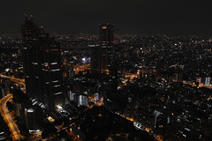 A view from Tokyo Metropolitan Government Building Observation with DP1 Merrill