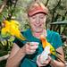 Bird World, Kuranda in Queensland, Australia