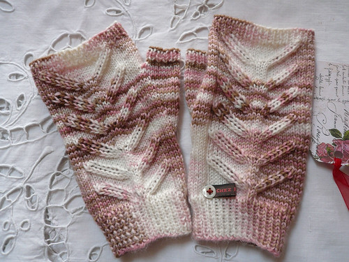 Dragonfly Mitts