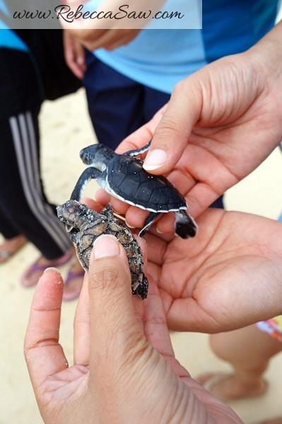 malaysia tourism hunt - redang island marine park-017