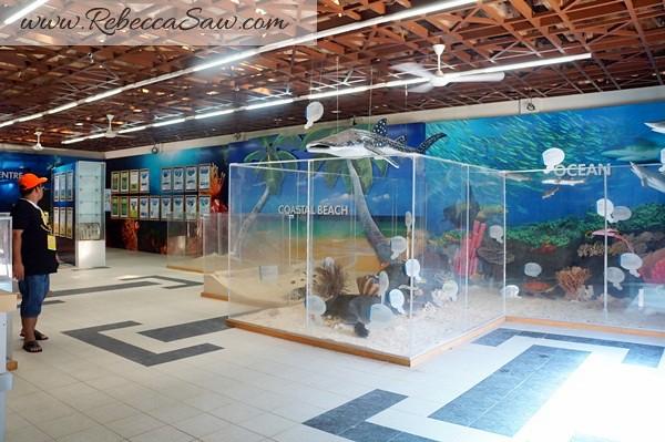 malaysia tourism hunt - redang island marine park-009