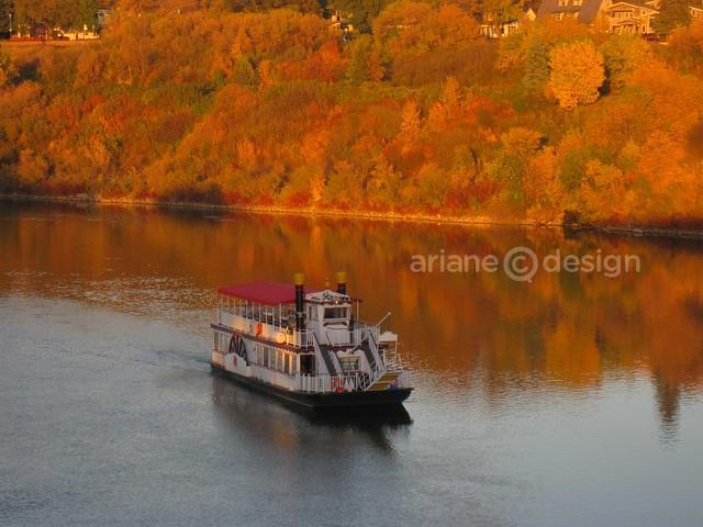 Shearwater Boat Cruise-6
