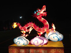 Dragon Lantern display