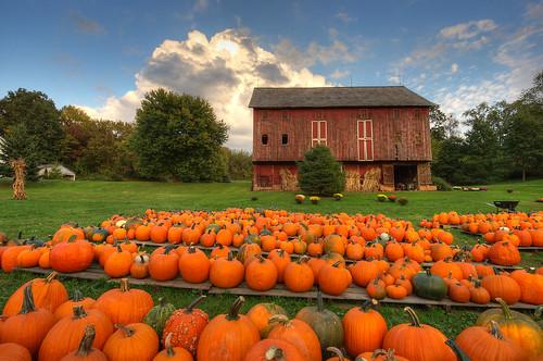 autumn ohio fall barn rural pumpkin geotagged nikon raw nef hdr cs5 d3s starkcountyohio nikkor1424f28 nikongp1 photomatixpro4 rohrbarn