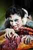 gore torso aj IMG_0146