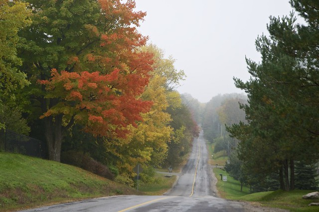 Scenic country road flickr photo sharing - Beautiful panoramic view house to take full advantage of the scenery ...