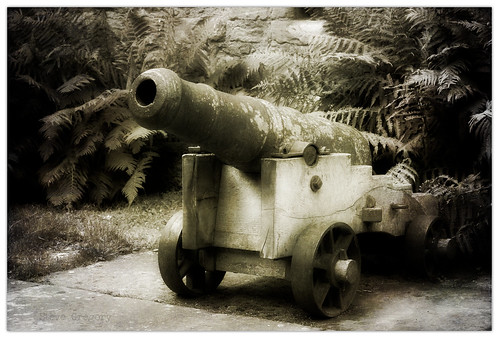 cannon fodder by Steve_Gregory