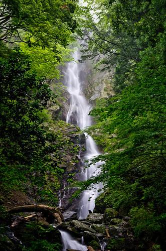 福養の滝 2012.7.8-2