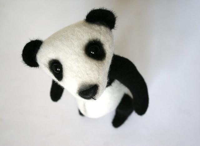 panda - sweet eyes