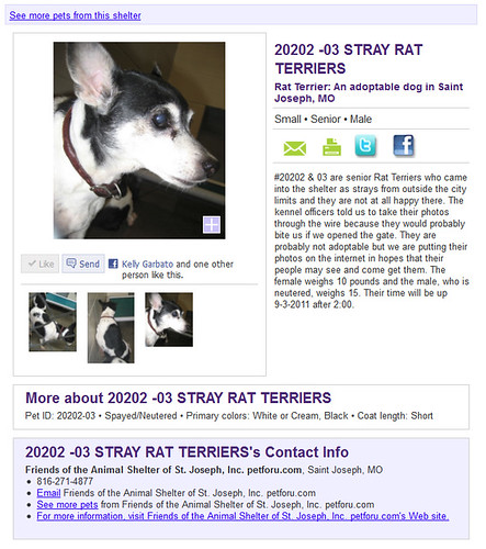 2012-08-31 - Mags & Finnick's Petfinder Listing