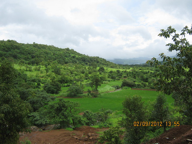 Katyayani's Upvan Plots at Morve on Pavana Dam near Lonavala