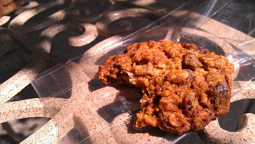 Oatmeal cranberry cookie, belle cakery, philadelphia