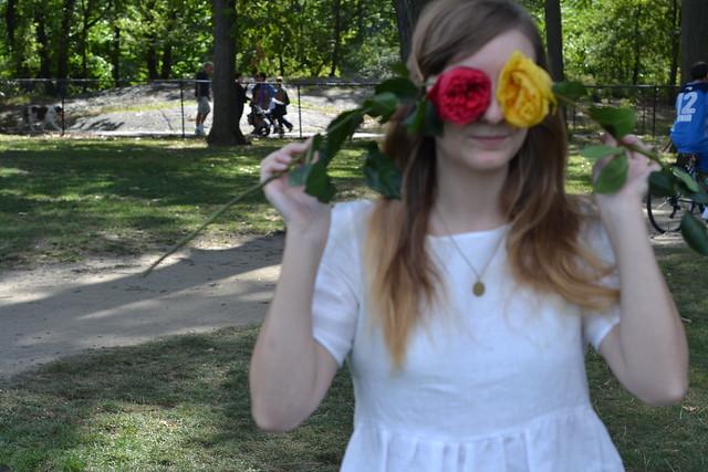 Blogger Picnic