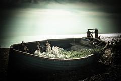 Brighton Boats