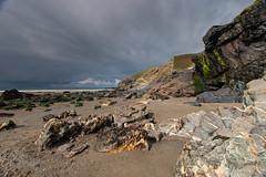 Tregardock bay