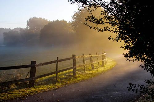 mist sunrise fence early path curve hdr shaftoflight