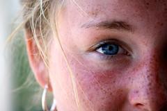 nose, freckle, face, skin, girl, head, ear, cheek, close-up, blond, eyebrow, forehead, beauty, eye, organ,