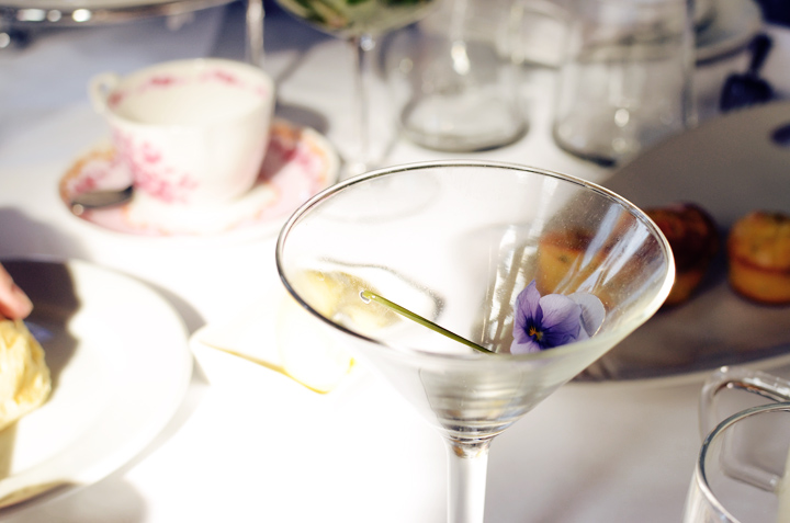 societea cocktail empty violet