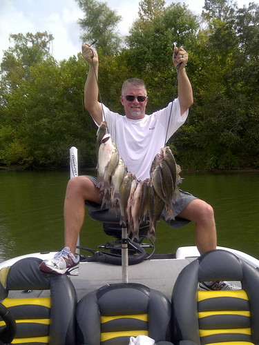 Lake livingston white bass freshwater reports texas for Lake livingston fishing report