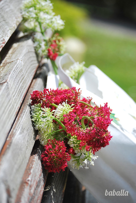 flores_original