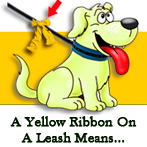 Yellow Dog Ribbon Campaign
