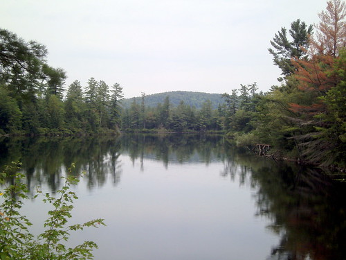 trees camp mountain lake ny mountains tree water price rural forest landscape pond cabin woods quiet view peaceful scene adirondacks remote morgan adirondack duane malone adirondackmountains longpond maloneny lakefrances morganrd morganroad duaneny franceslake duanelake longpondcamp lakeduane
