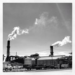 Sugar Mill at Puunene