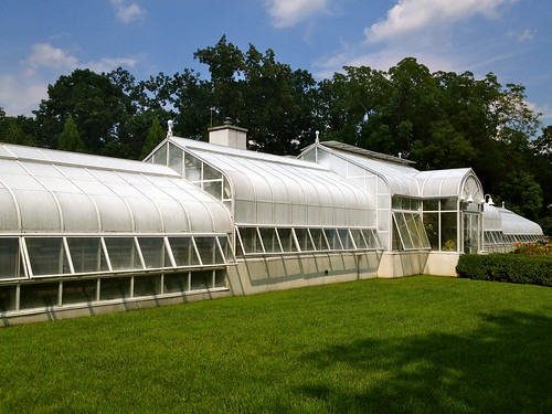 The greenhouse at Hillwood Estate, Museum and Garden
