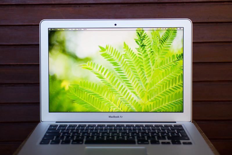IMAGE: http://farm9.staticflickr.com/8461/7938242664_0f6299c616_c.jpg