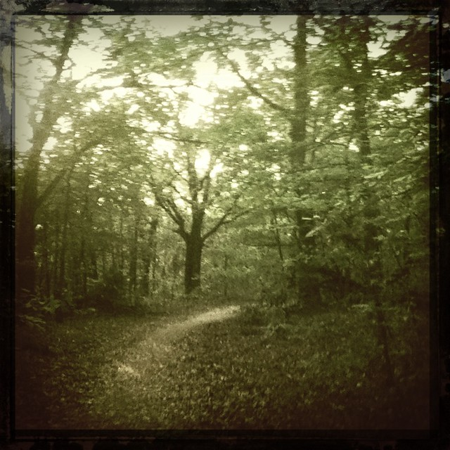 #spooky Turkey Mountain #trails #tulsa #running