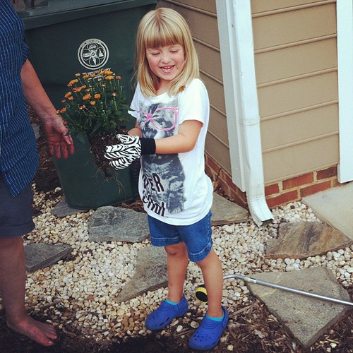 Catie the gardener. She & my mom planted chrysanthemums today.