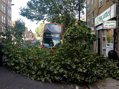 188 bus crashes into a tree