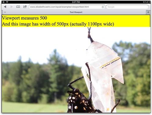 viewport=500, image=500