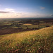 Devils Dyke during Golden Hour by Jonathan Woods Photography