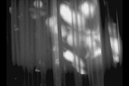 three shots of shadowplay