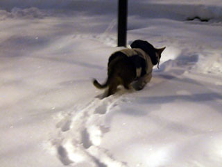 gunhee-snow4