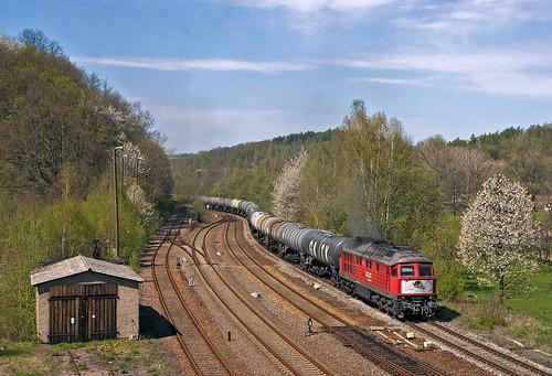 railroad germany railway trains sachsen bahn mau germania ludmilla freighttrain ferrovia treni 60954 nikond90 br241 guterzuge te109