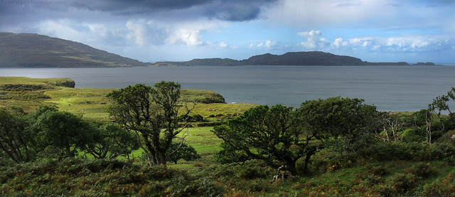 Ulva near Ballygown