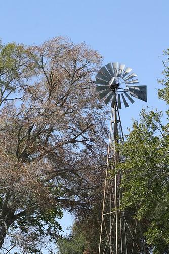 trees windmill texas hww austincounty industrytx industryunitedmethodistchurch