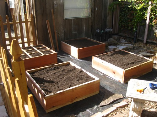 3'x3' raised beds