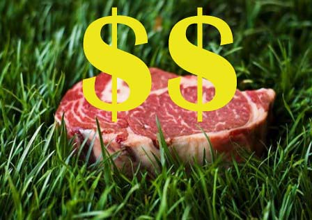 grass-fed-beef $$ copy