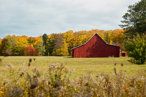 Michigan Red Barn