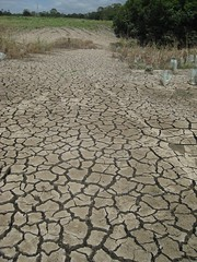 natural disaster, field, soil, drought, disaster,